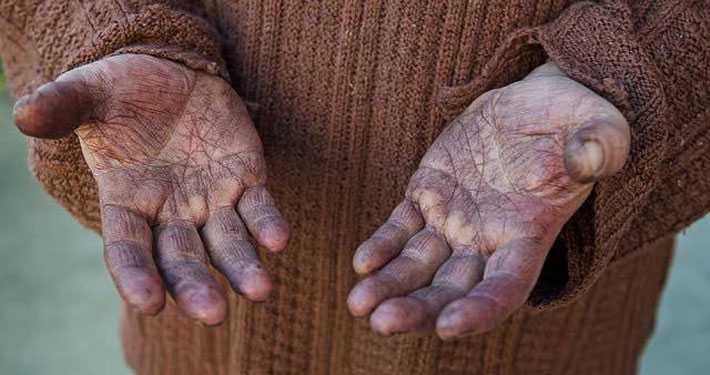 Wine growers hands